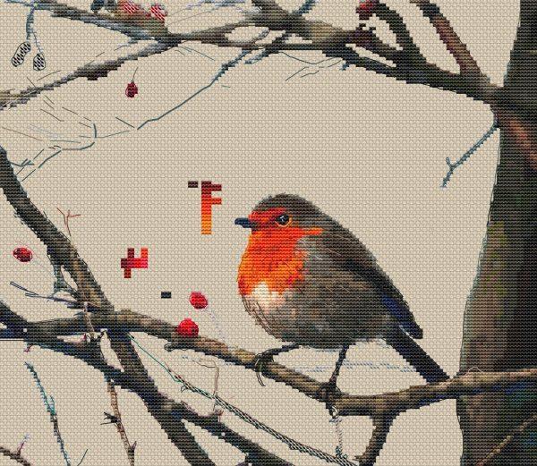 Bird Robin final